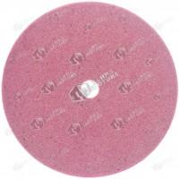 Disc ascutire lant drujba 100x10x2.5